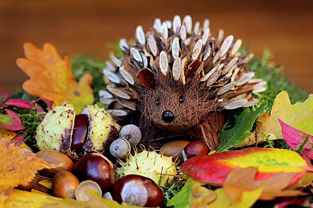 decor autmn chestnuts leaves