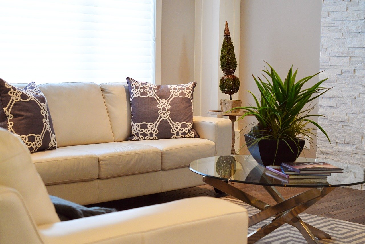 living room plant couch table pillows